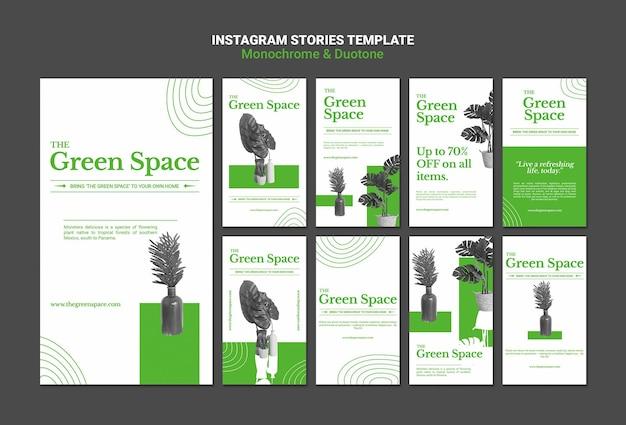 Modèle d'histoires de médias sociaux d'espace vert