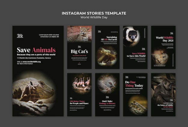 Modèle d'histoires de médias sociaux pour la journée mondiale de la faune