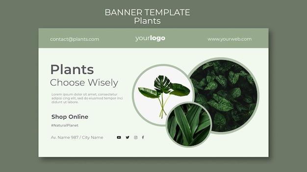 Modèle de magasin de plantes de bannière