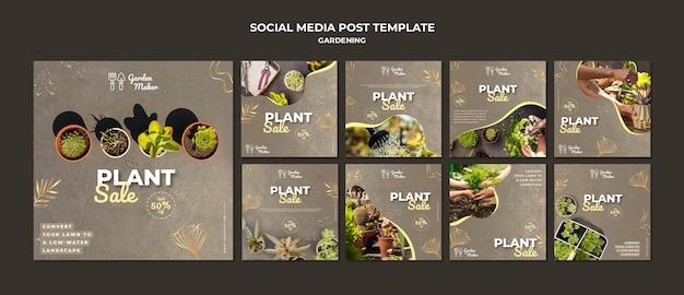 Modèle de messages instagram de jardinage avec photo