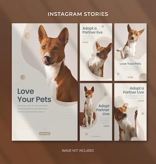 Modèle pet care pour les histoires instagram