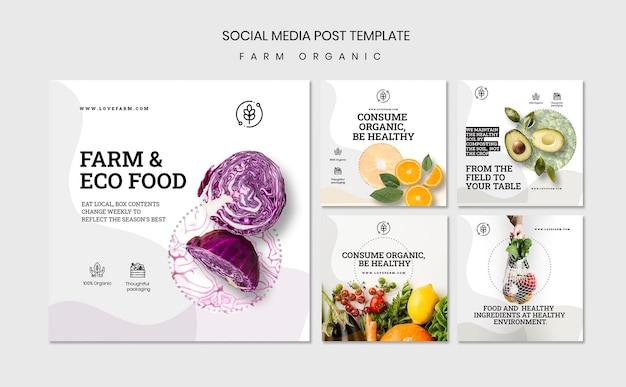 Modèle de publication de médias sociaux biologiques de ferme