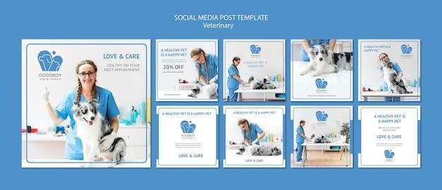 Modèle de publication sur les médias sociaux de la clinique vétérinaire