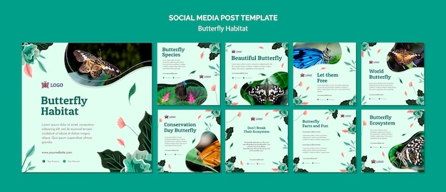 Modèle de publication de médias sociaux concept d'habitat de papillon