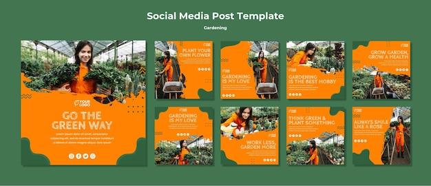 Modèle de publication sur les médias sociaux de concept de jardinage