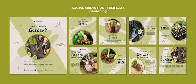 Modèle de publication de médias sociaux de jardinage