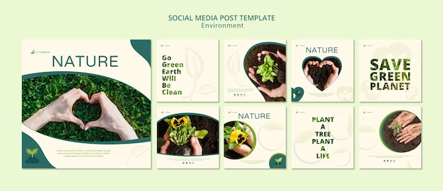 Modèle de publication sur les médias sociaux nature et semis