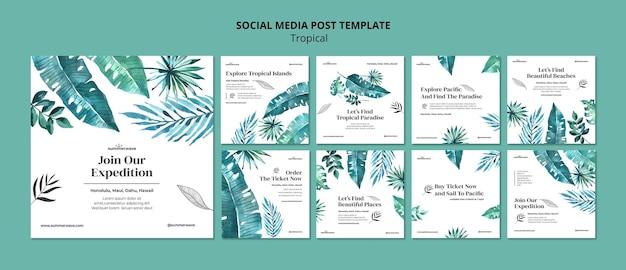 Modèle de publication de médias sociaux de style design tropical