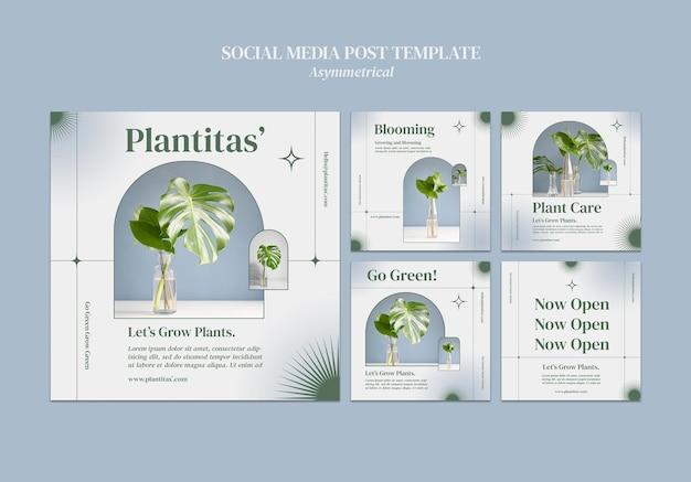 Modèle de publication sur les réseaux sociaux de plantes en croissance