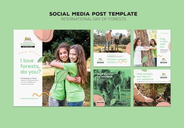 Modèle de publications sur les médias sociaux de la journée de la forêt