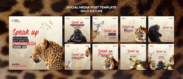 Modèles de publications sur les médias sociaux de la nature sauvage