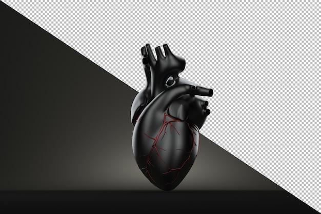 Nature morte coeur humain sur fond noir