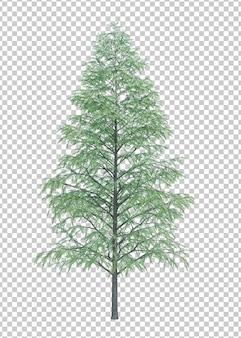 Nature objet arbre isolé blanc espace
