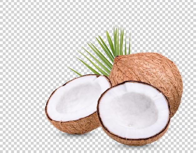 Noix de coco avec des feuilles isolées premium psd