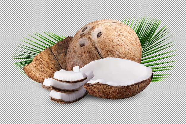 Noix de coco isolées