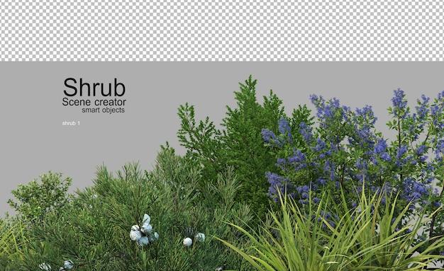 De nombreux arbustes et plantes à fleurs dans un petit jardin