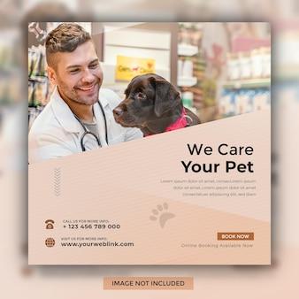 Nous prenons soin de votre animal de compagnie modèle de publication sur les réseaux sociaux instagram