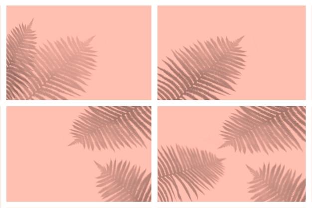 Nuance de feuilles tropicales dans un ensemble de présentation avec effets de lumière naturelle