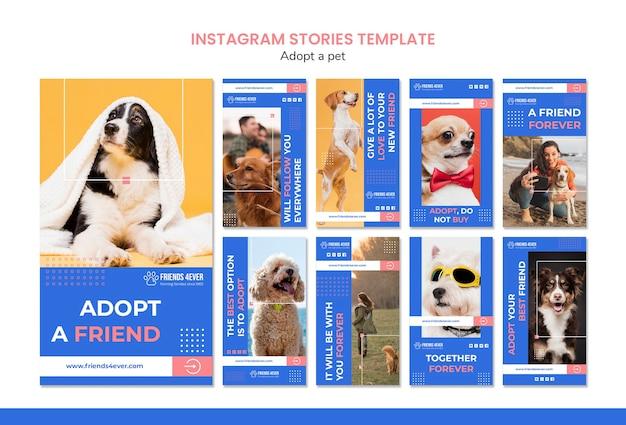 Pack d'histoires instagram pour adopter un animal de compagnie avec des chiens