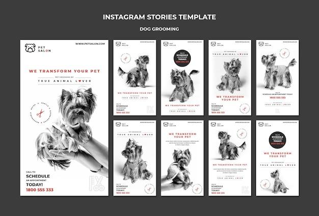 Pack d'histoires instagram pour une entreprise de toilettage pour animaux de compagnie