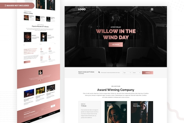 Page du site web de willow in the wind day
