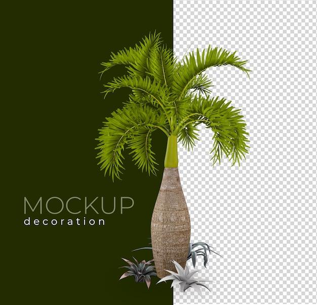 Palmier dans les décorations de rendu isolé