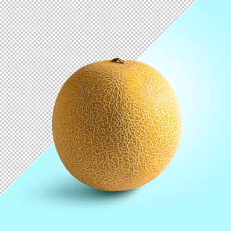 Petit melon jaune sur fond modifiable