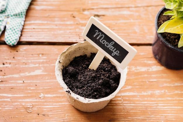 Plante haute vue dans une maquette de pot