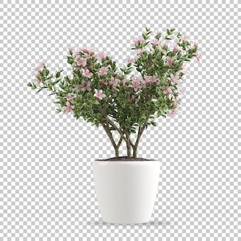 Plante en pot en rendu 3d
