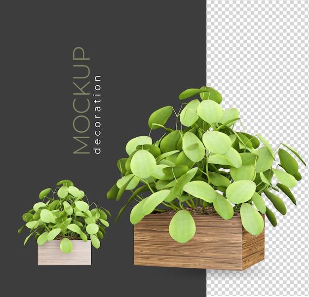 Planter en pot dans des décorations de rendu isolées