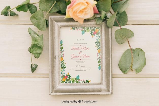 Plantes, fleurs et châssis
