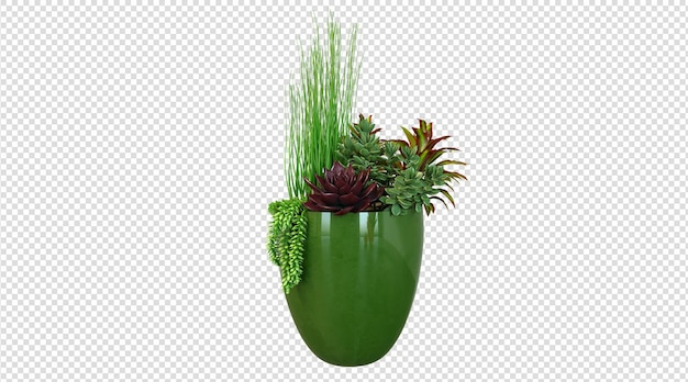 Plantes en pot en céramique verte