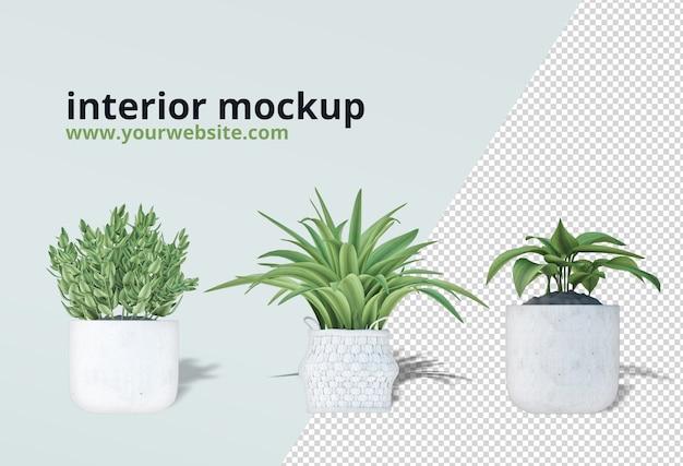 Plantes en pot dans une maquette de rendu 3d