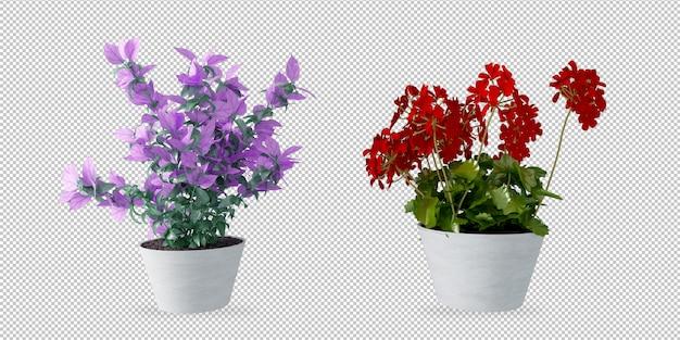 Plantes en pots en rendu 3d
