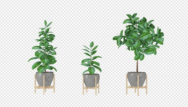 Plantes réalistes dans le rendu 3d