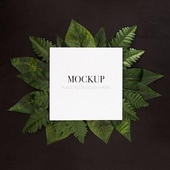 Plantes tropicales avec une maquette de cadre sur fond noir