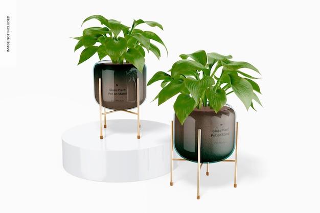 Pots de plantes en verre sur stand maquette, vue de face