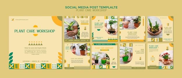 Publication sur les médias sociaux de l'atelier d'entretien des plantes