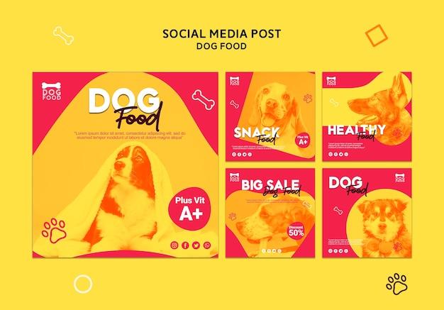 Publication de médias sociaux sur les collations pour chiens