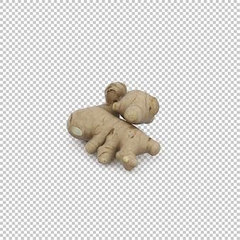 Racine isométrique de gingembre