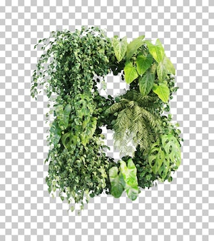 Rendu 3d de l'alphabet de jardin vertical b
