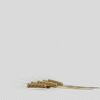Rendu 3d de blé