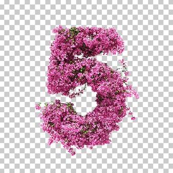 Rendu 3d de bougainvillea numéro 5
