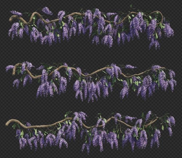 Rendu 3d de la collection d'arbres queen's wreath