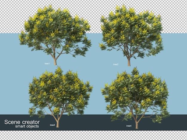 Rendu 3d de différents types d'arbres
