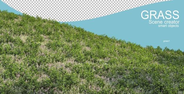 Rendu 3d de différents types de prairies