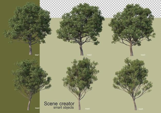 Rendu 3d de divers arbres isolés