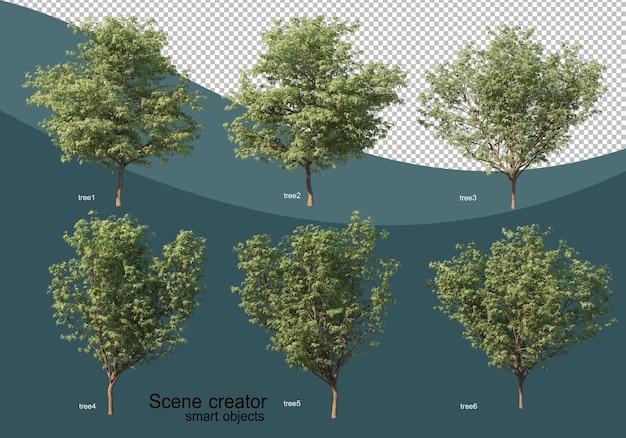 Rendu 3d de divers arbres