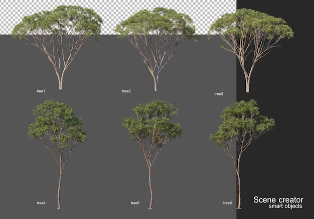 Rendu 3d, diverses dispositions d'arbres