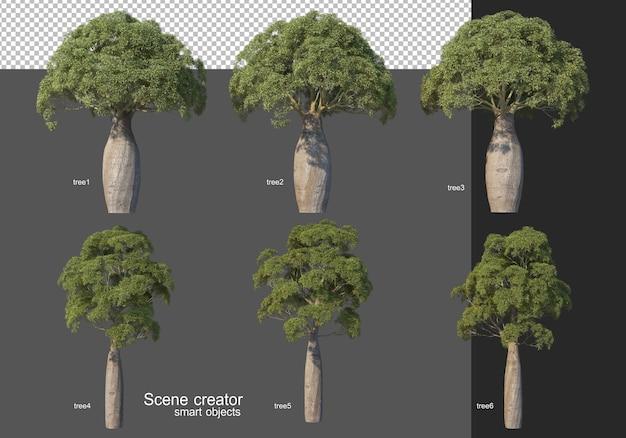Rendu 3d, diverses dispositions d'arbres